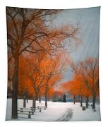 The Colours Of Winter Tapestry
