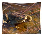 The Common Toad 1 Tapestry