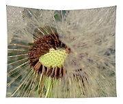 The Dandelion Nucleus Tapestry