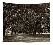 The Deep South Bw Tapestry