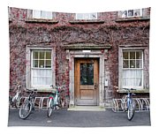 The Dorms At Trinity College Dublin Ireland Tapestry
