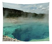 The Emerald Pool Colors Tapestry