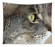 The Eye Of The Tiger  Tapestry