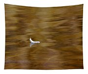 The Floating Feather Tapestry