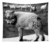 The Flock Is Safe Grayscale Tapestry