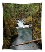 The Flow Of It All  Tapestry