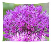 The Full Bloom Of Flowering Ornamental Onion Tapestry