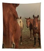 The Gauntlet - Horses Tapestry