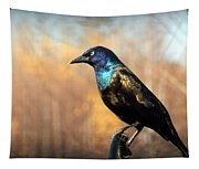 The Grackle Tapestry