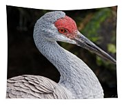 The Greater Sandhill Crane Tapestry