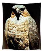 The Hawk Tapestry