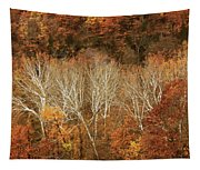 The Hills In Autumn Tapestry