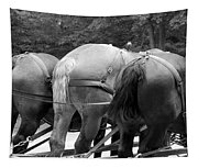 The Horses Of Mackinac Island Michigan 03 Bw Tapestry