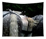 The Horses Of Mackinac Island Michigan 04 Tapestry