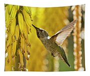 The Hummingbird And The Yellow Aloe  Tapestry