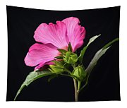 The Light Rose Of Sharon 2017 Square Tapestry