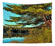 The Little Known Cary Lake Tapestry