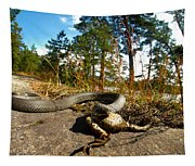 The Lunch Of Grass Snake Tapestry