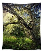 The Mighty Oaks Of Garland Ranch Park 1 Tapestry