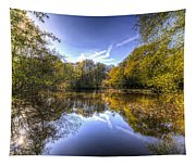 The Mirror Pond Tapestry