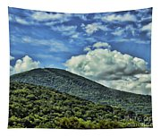 The Mountain Meets The Sky Tapestry