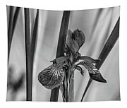 The Mystery Of Spring 2 Bw Tapestry