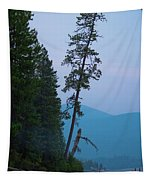 The North Shore At Elkins Tapestry