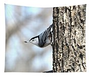 The Nuthatch Tapestry