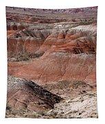 The Painted Desert  8024 Tapestry