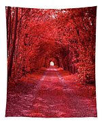 The Path 2 Tapestry