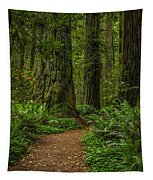 The Path Less Taken Tapestry