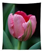 The Peculiar Pink Tulip Tapestry