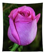 The Pink Rose Tapestry