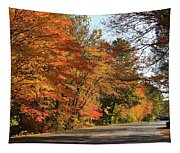 The Road Less Traveled Tapestry