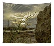 The Rock Tapestry
