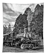 The Rocket Monochrome Tapestry