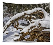 The Roots Of Winter Tapestry