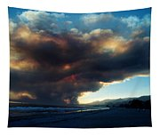 The Santa Barbara Fire Tapestry