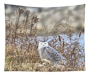 The Snowy Owl Tapestry