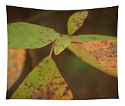 The Soft Intensity Of Fall 6210 H_2 Tapestry