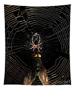 The Spider  And The Fly Tapestry