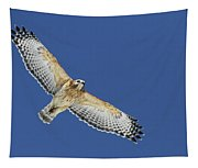The Spirit Of The Hawk Tapestry
