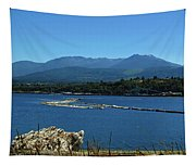 The Spit Tapestry