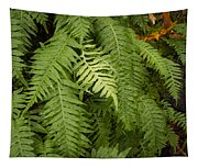 The Standout Fern Tapestry