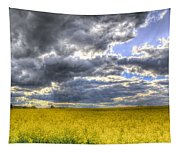The Storms Approach  Tapestry