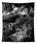 The Stream In Bw Tapestry