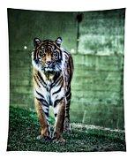 The Tigress Tapestry