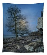 The Tree Of Inis Mor Tapestry