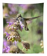 The Wonder Of Wings  Tapestry
