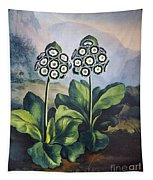 Thornton: Auriculas Tapestry